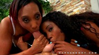 Two Sexy Ebony Babes Sucking Large White Cock