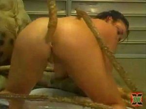 Compilation Of Sexy Girls Getting Drilled By Tentacles