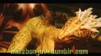 3d Animation Skyrim The Lusty Argonian